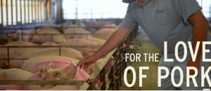 love of pork