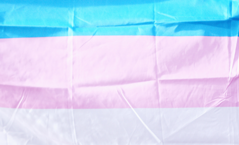 Pictured is a transgender flag.