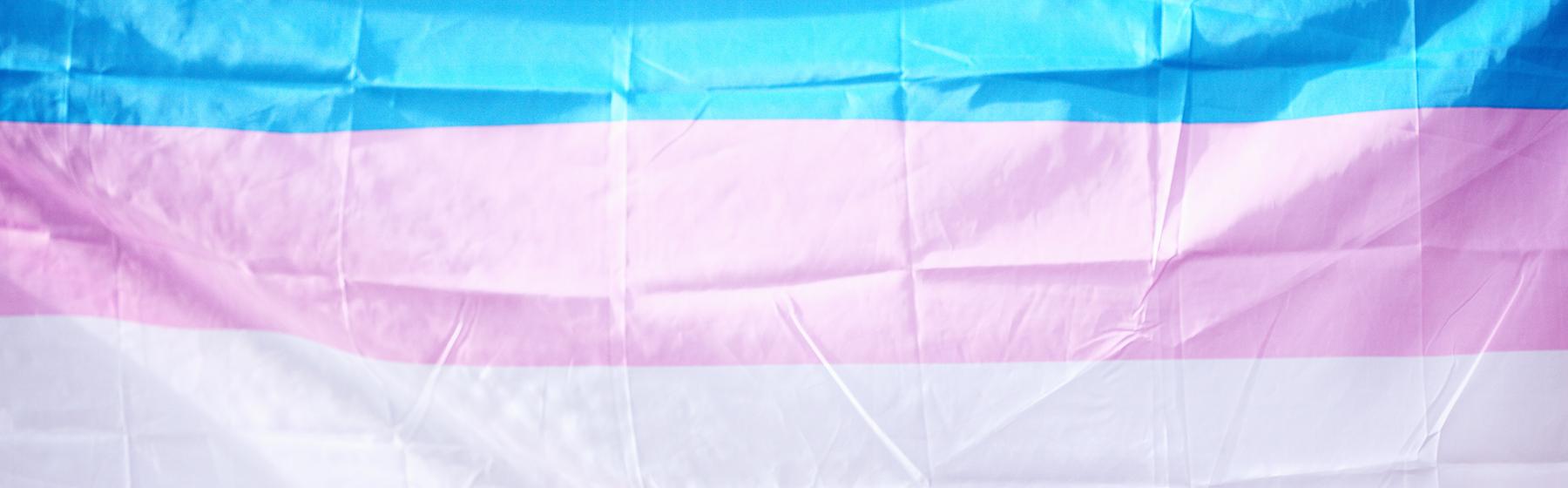 Pictured is a transgender flag.