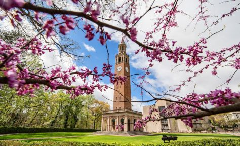 Bell tower in spring