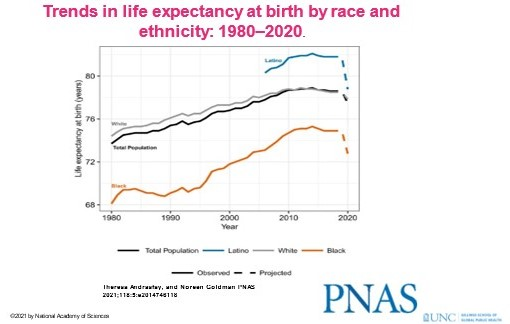 Line graph shows trends in life expectancy at birth by race and ethnicity: 1980-2020.